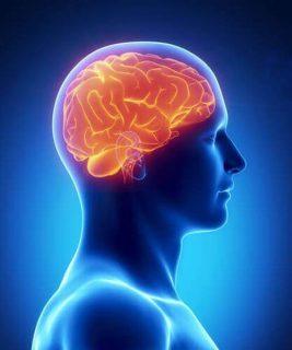 1. Fortalecer la ciencia y la memoria.