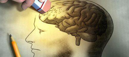 Ofrecen protección neurológica.