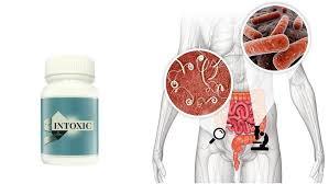 Intoxic - cómo usar, dosificación, prospecto