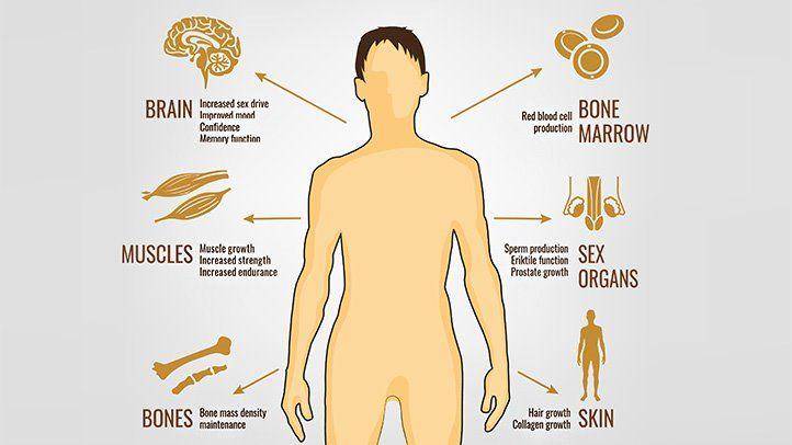 Cómo elegir el mejor potenciador de testosterona