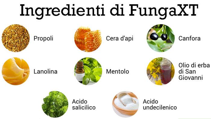 ¿Qué ingredientes contiene FungaXT?